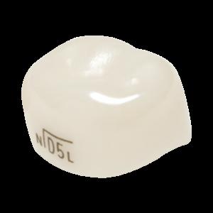 molar angosto superior izquierdo